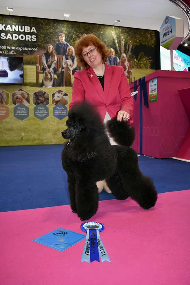 Crufts Bazaar's All is One